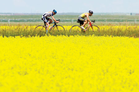 Herald photo by Ian Martens Mason Muller follows Danny Robdrup between fields of canola blooms during cycling action near the community of Readymade east of Lethbridge Wednesday during the first day of the Southern Alberta Summer Games.  @IMartensHerald